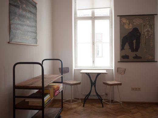 brillantengrund-apartment-5